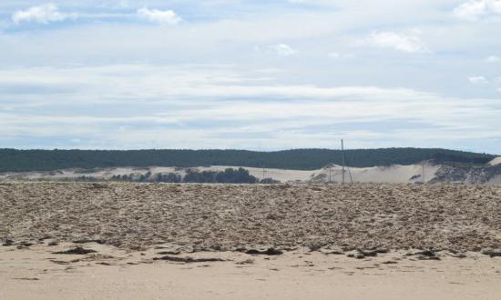 Banc d'Arguin - une dune