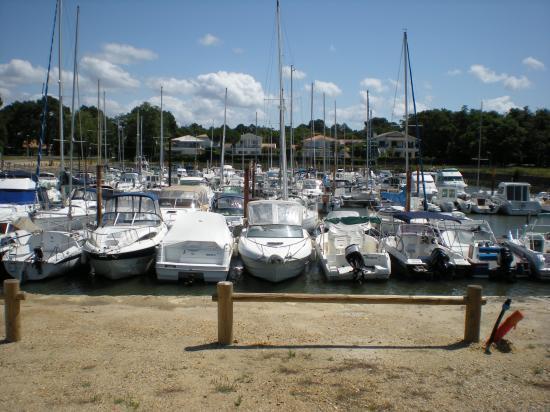 le port en juillet  2008